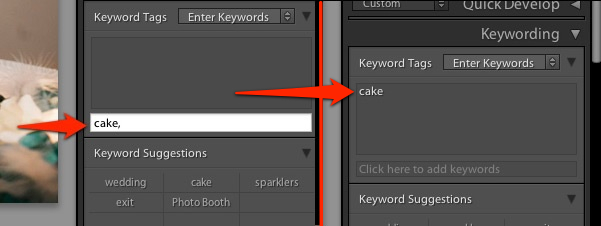 Once you enter your keywords and click away, the keywords are applied to the image super easily.