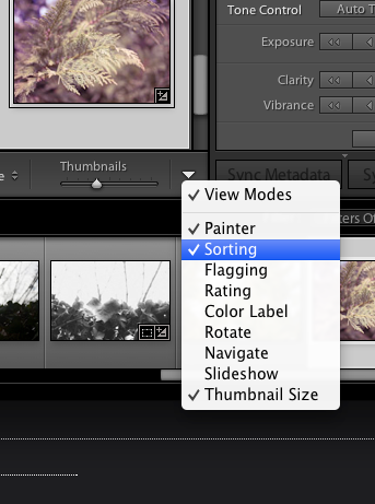 Press the dropdown arrow on the far right to add sorting if you don't already see it.