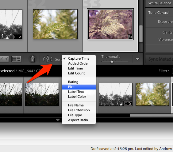 Lightroom has a ton of ways to sort images. How do you sort yours?