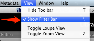 "The filter bar lets us filter by keywords easily. Turn it on by going to the View menu and choosing ""Show Filter Bar."""