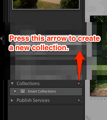 """Press the plus button to the right of """"Collections"""" to start a new image collection in Lightroom."""